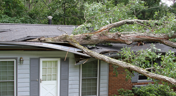 storm-damage-roof & What Homeowners Need to Know About Insurance Claims for Roofs memphite.com