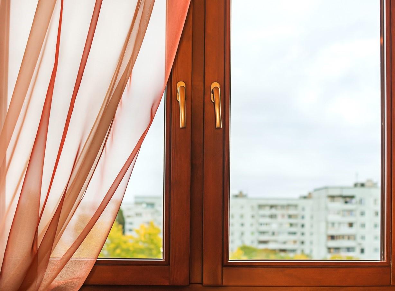 Window in