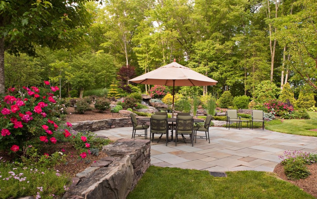 Reinvent Your Backyard