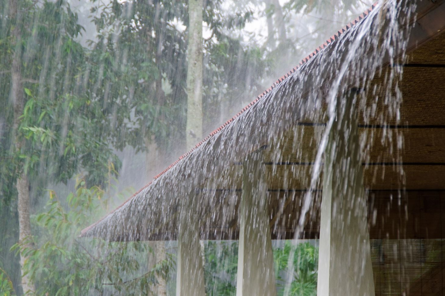 Natural Disasters How To Protect Your Home From Bad