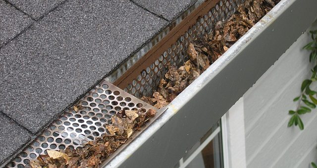 gutters need cleaning in the fall